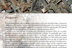 003-Ruzarij-za-Hrvatski-križni-put-scaled